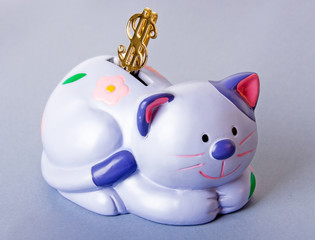 cat moneybox with dollar sign on it