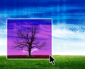 Tree and technology