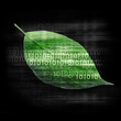 Green leaf with binary code