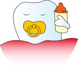 Baby-Zahn