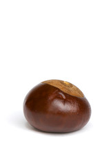 opened fruit of chestnut on a white background