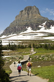 hikers on Hidden Lake Trail in Glacier National Park poster