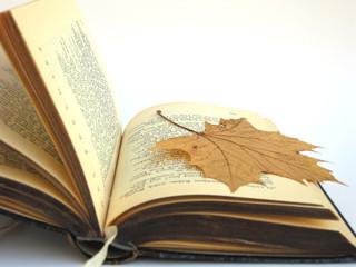 Altes Buch und Ahornblatt