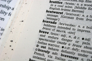dictionary-brave