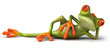 Leinwanddruck Bild Grenouille allongée