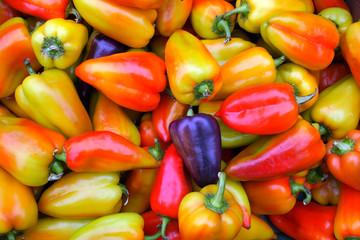 bell pepper background