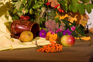 Autumn bright still life composition color image