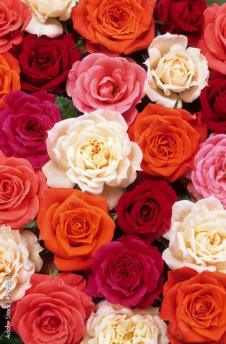 Fototapeta lit de roses