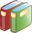 Icon of two standing books
