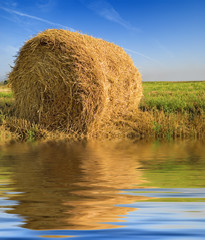 sheaf of hay near the water