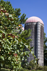 An old grain silo past a crabapple tree against blue sky