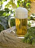 Sille mit Bier poster