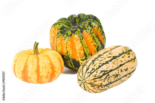 Delicata, Carnival and Sweet Dumpling winter squashes