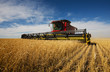 modern combine harvester working on a wheat crop - 9847508