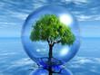 Quadro arbre en bulle