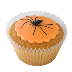 Halloween spider cupcake isolated on white