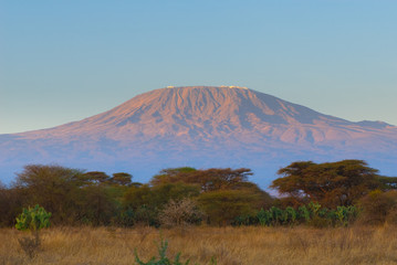 kilimanjaro mountain in the sunrise
