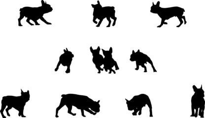 french bulldog playing, vector silhouettes