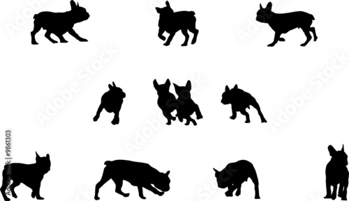 Bulldog Silhouette Vector French Bulldog Playing Vector