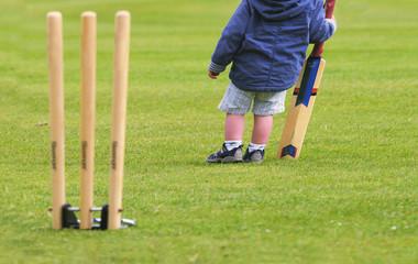 closeup outdoor cricket image