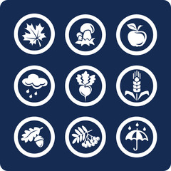 Seasons: Autumn vector icons (set 4, part 2)