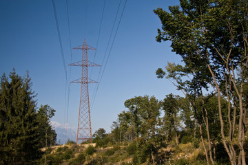 Electric pylon in the woods