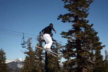 skier in a big jump, pine tree background