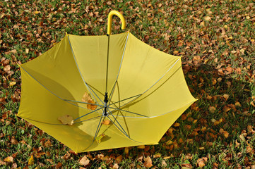 Autumn etude with a yellow umbrella