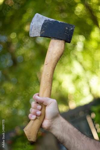 A man holding onto a small hatchet used to chop wood.