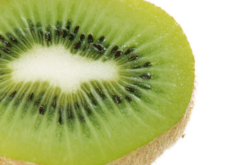 Kiwi in close-up on white background