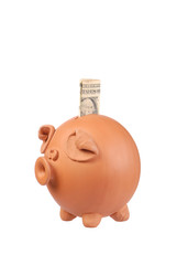 Piggy bank and dollar note on white background