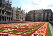 Flower carpet blossoms on Brussel's main square