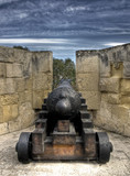 Authentic medieval cannon in HDR format poster