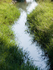 artificially flow of water for irrigation