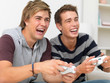 A couple of guys using a gaming console