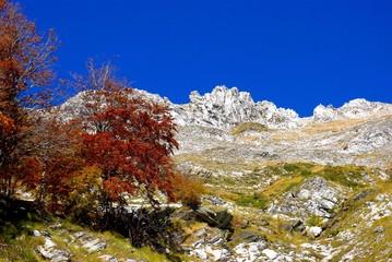 Alpi Apuane: Autunno sulla Tambura