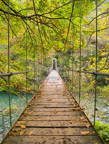 Parque Nacional Fragas del Eume - 9948188