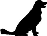 Fototapety silhouette chien