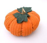 Isolated Plush Pumpkin poster