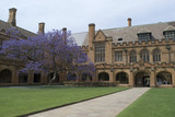 gothic revival architecture at sydney university, australia poster
