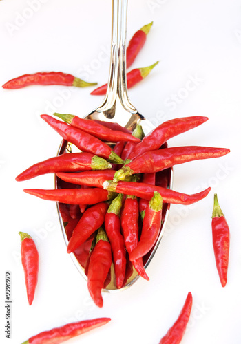 Red chili in the silver spoon