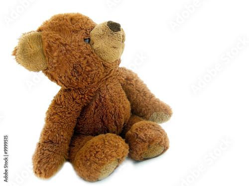 Leinwanddruck Bild Teddy Bear On White