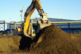 Hydraulic excavator at work. Shovel bucket and cranes poster
