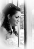 Portrait of the beautiful bride