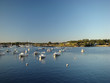 Leinwandbild Motiv Port Washington's harbor