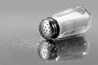 Salt shaker - 10031113
