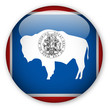 Wyoming state flag button