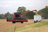 Combine transferring soybeans into a truck after harvest poster