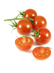 tomatoes on vine, isolated