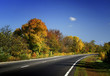Autumn road / Fall scenic / horizontal